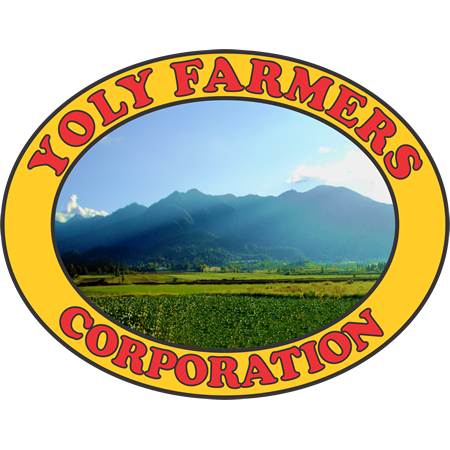 Yoly Farmers Corp