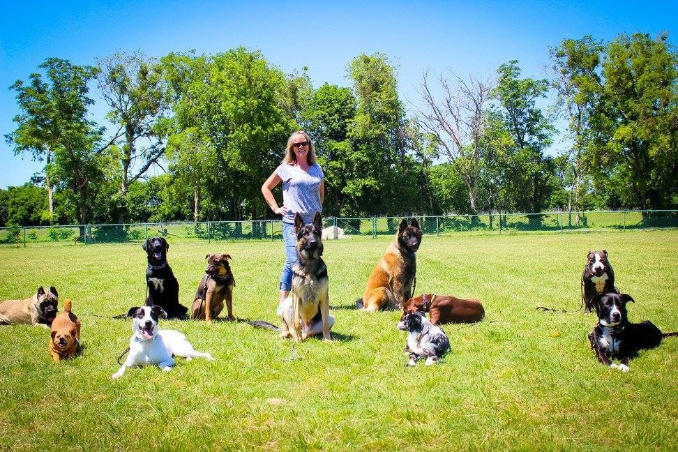 Leather & Lace K9 Academy - Winchendon, MA 01475 - (978)502-3838 | ShowMeLocal.com