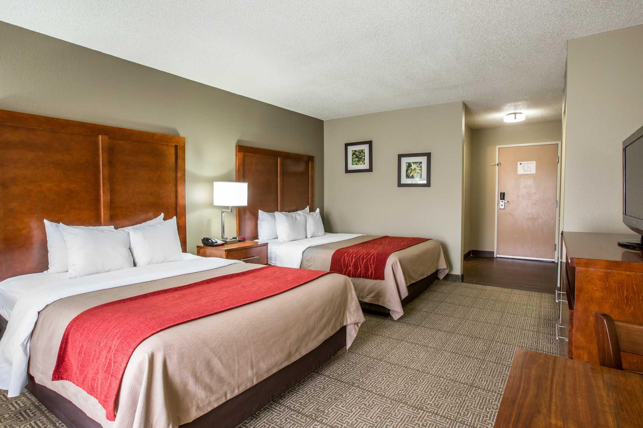 Comfort Inn & Suites at Dollywood Lane image 3