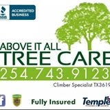 Above It All Tree Care