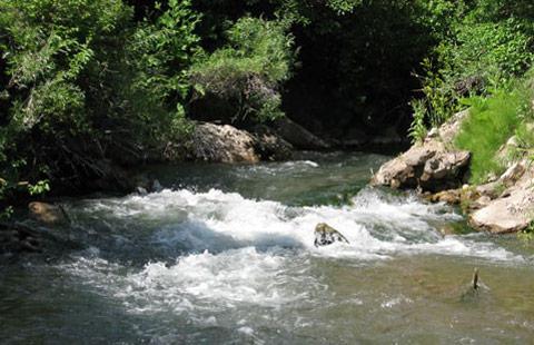 Montpelier Creek KOA Journey image 3