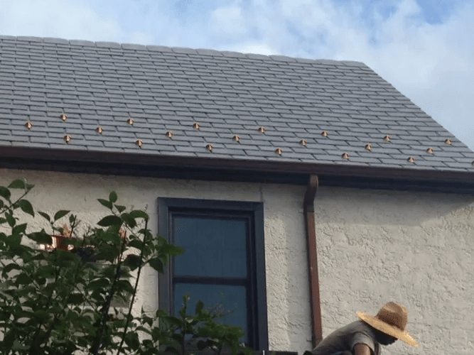 Bellerose Roofing & Siding image 10