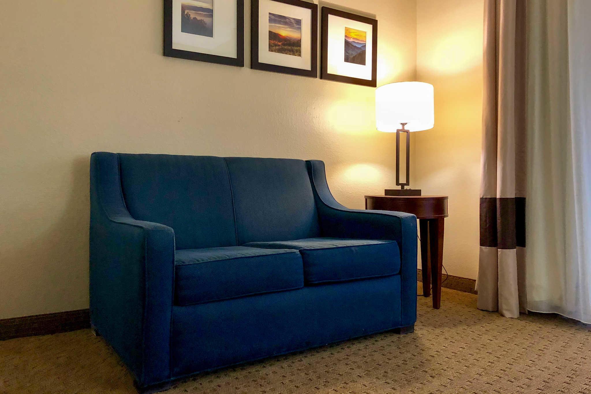 Comfort Suites Mountain Mile Area image 8