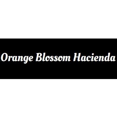Orange Blossom Hacienda LLC. - Queen Creek, AZ - Bed & Breakfasts