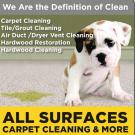 All Surfaces Carpet Cleaning & More
