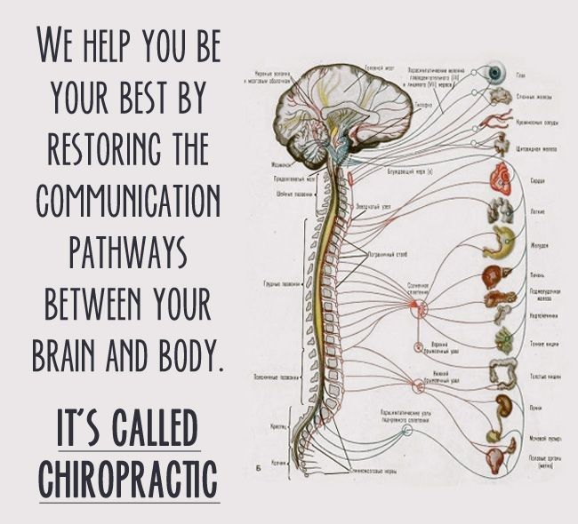 Well Integrative Chiropractic- Dr. Robert Lee, DC, L.Ac image 1
