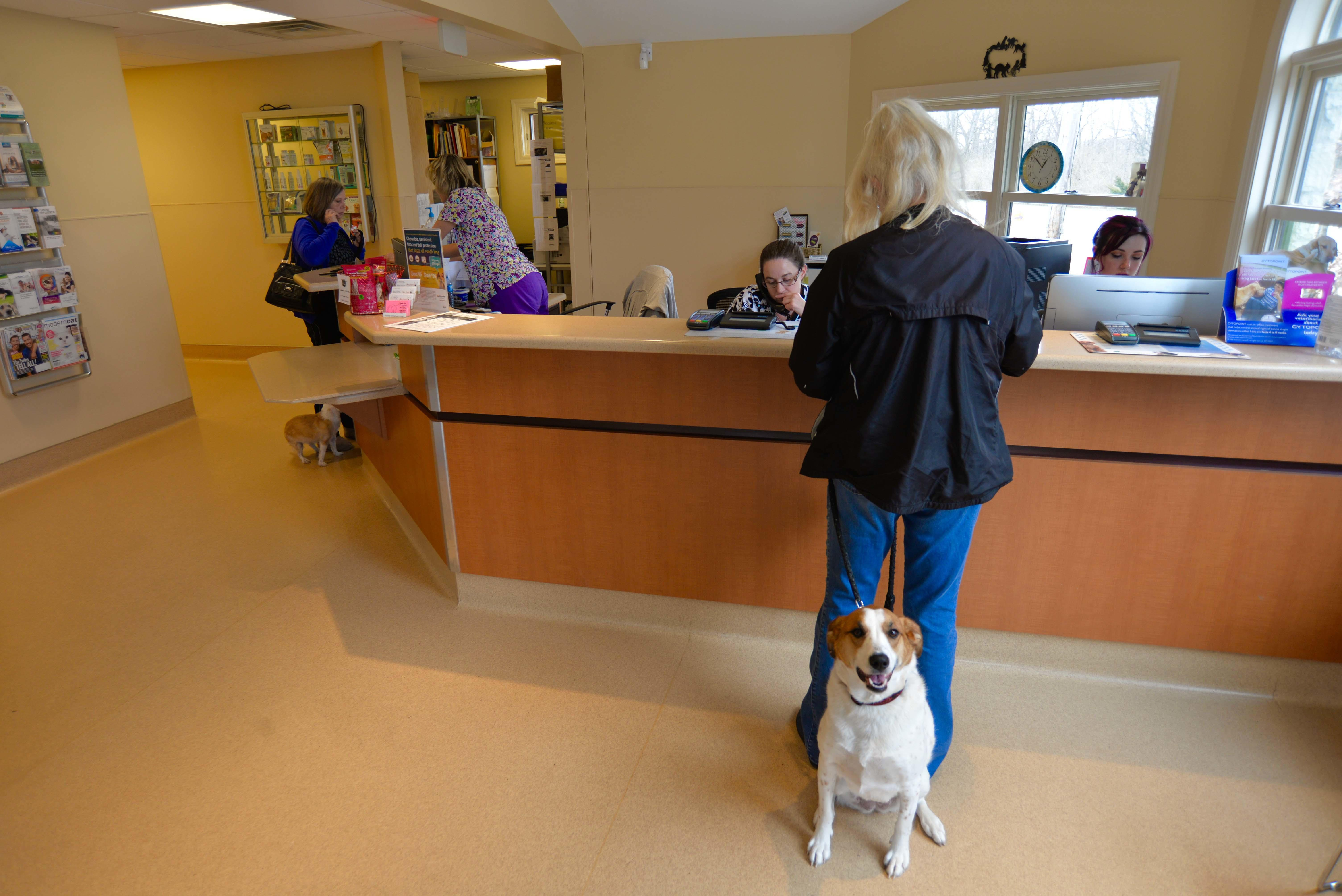 Archer Veterinary Clinic image 8