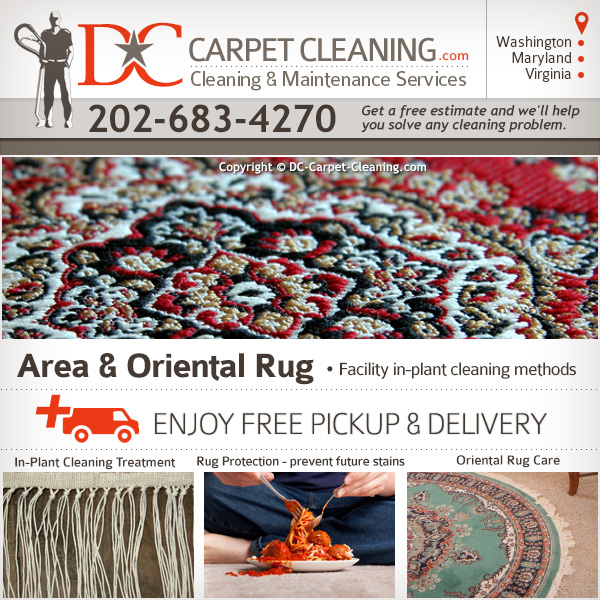 DC Carpet Cleaning image 6