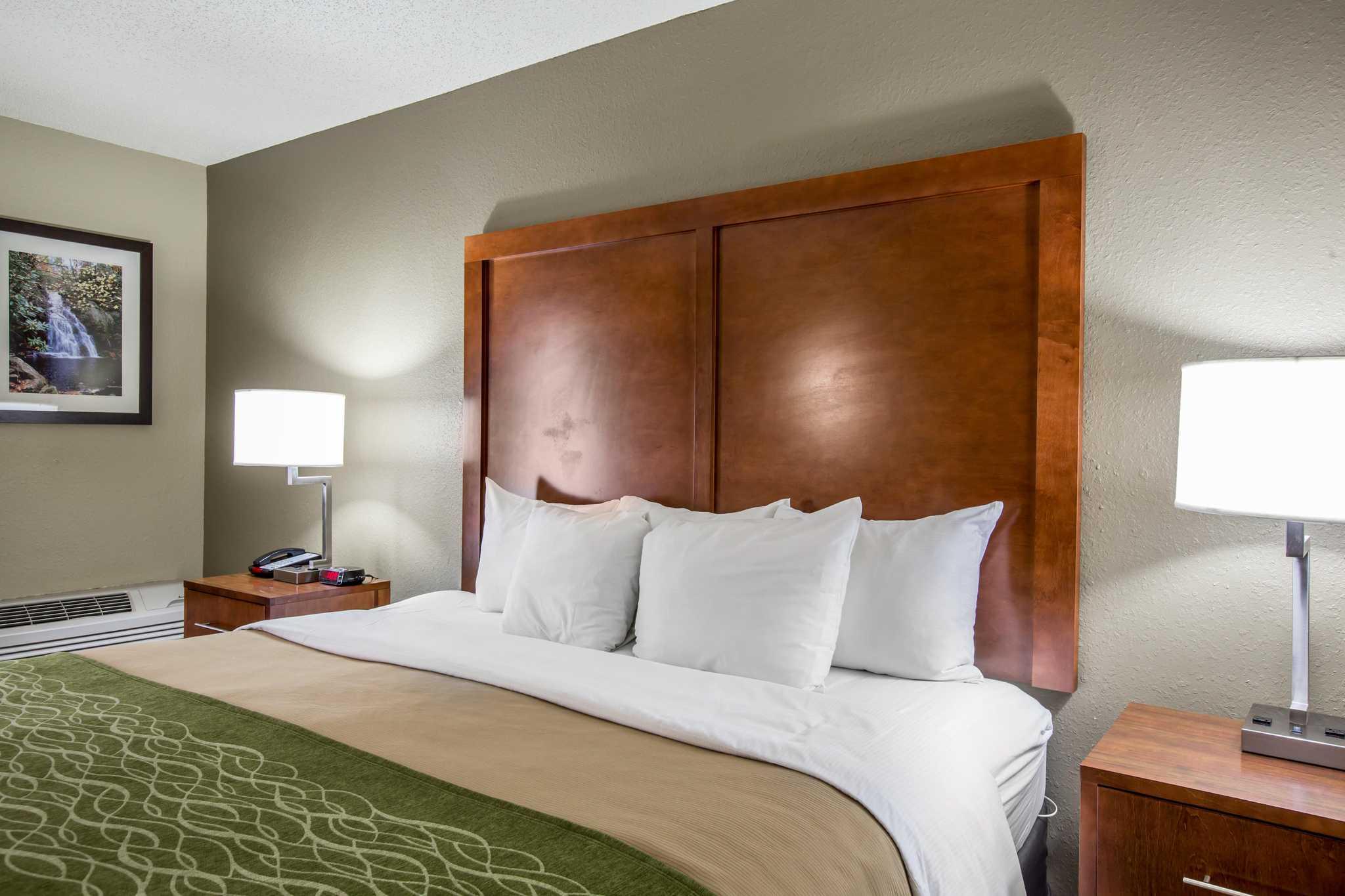 Comfort Inn & Suites at Dollywood Lane image 7