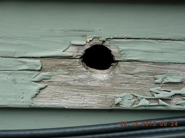 Superior Quality Home Inspections image 10