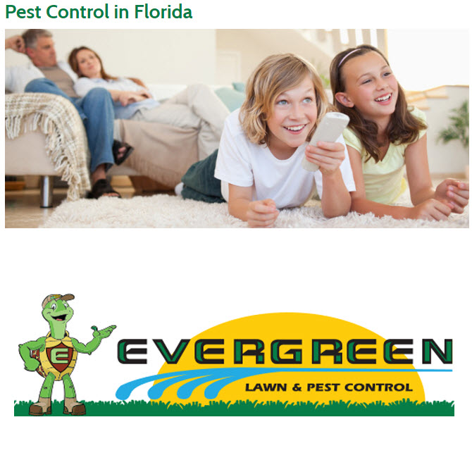 Evergreen Lawn & Pest Control image 4
