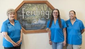 Ferding Electric, Inc image 9