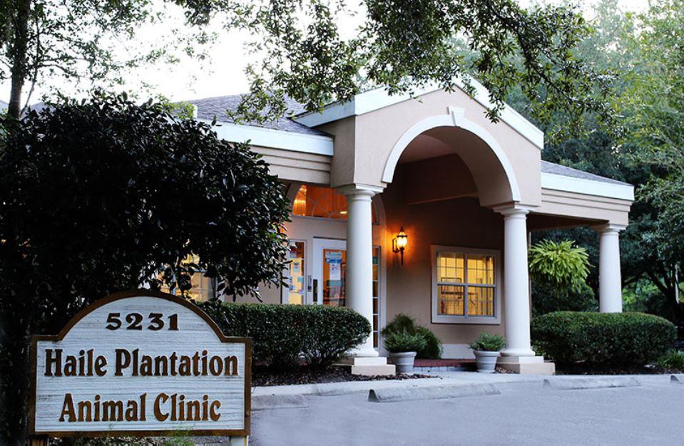 Haile Plantation Animal Clinic