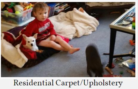 Future-Now Carpet Ltd