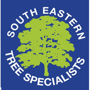 South Eastern Tree Specialists