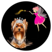 Your Fairy Dogmother Mobile Pet Spa image 0