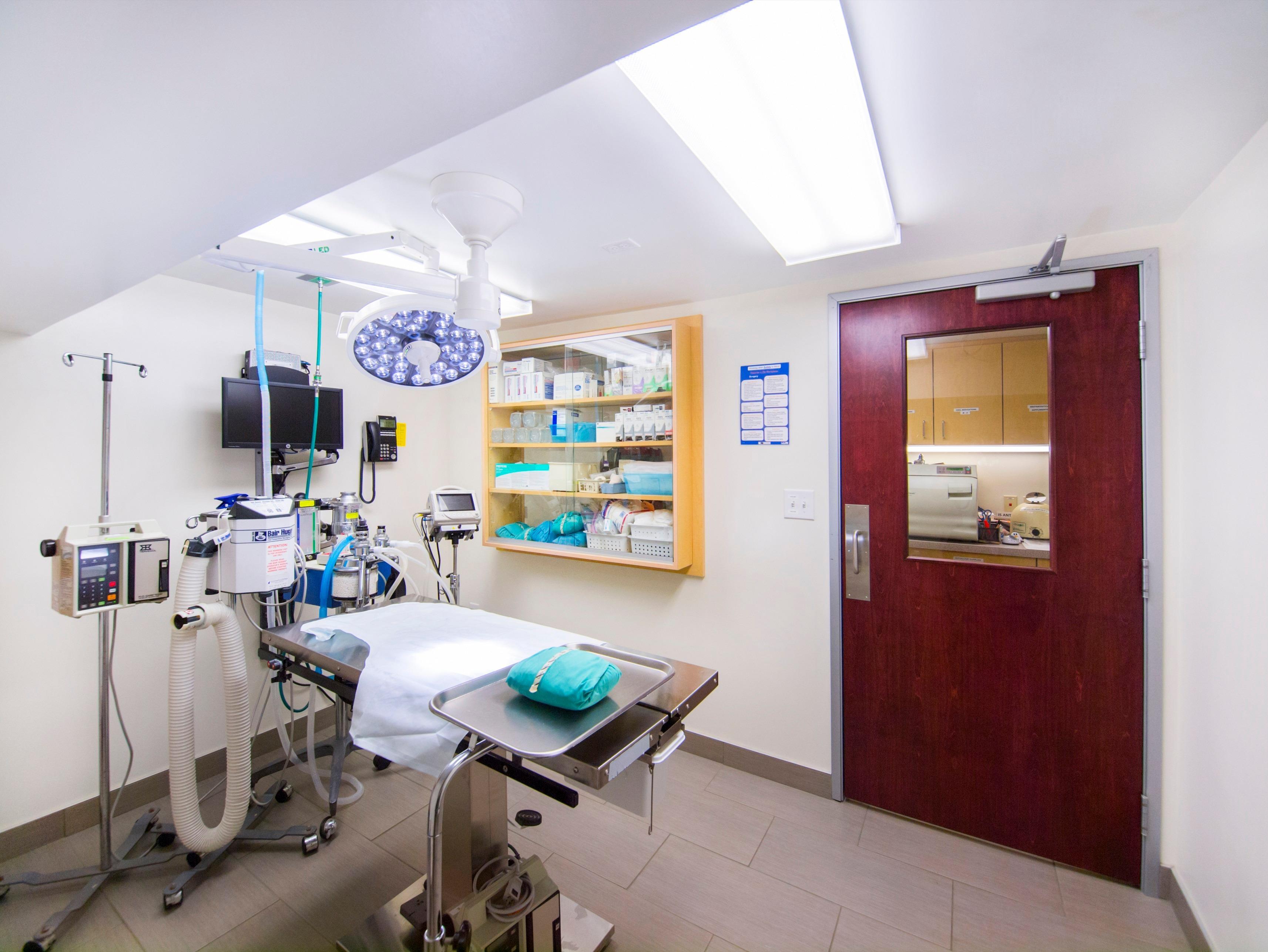 Vca Cat Hospital Philadelphia Review