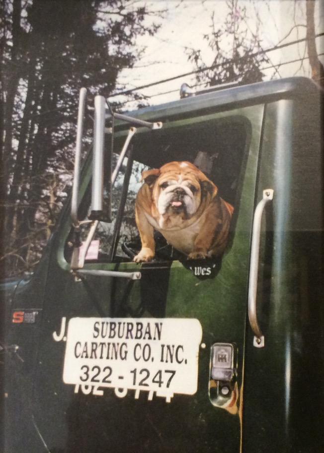 Suburban Carting Co Inc image 2