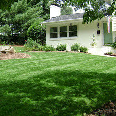 Lawngevity Landscaping & Maintenance, LLC image 4