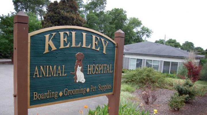 VCA Kelley Animal Hospital image 0