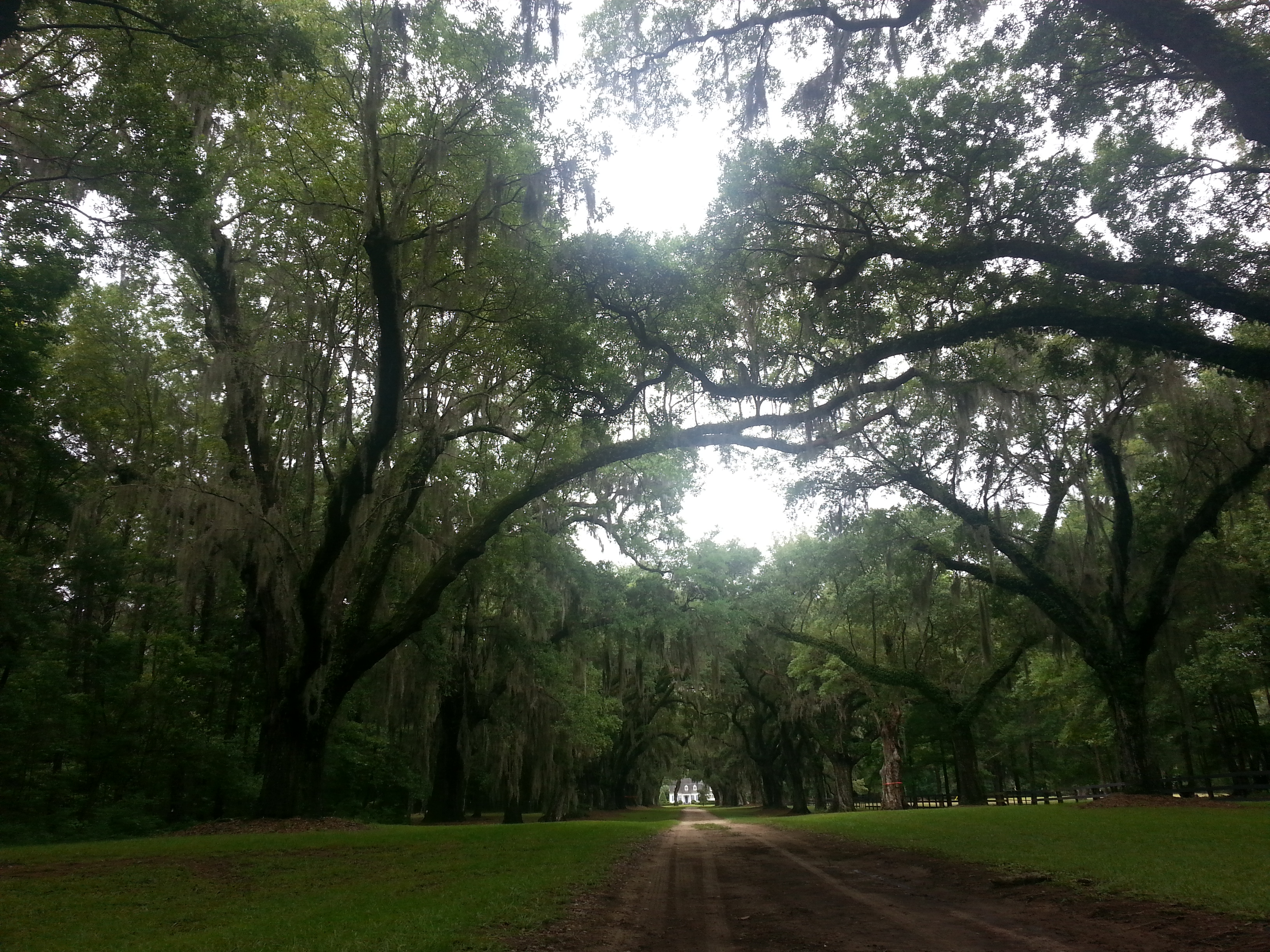 Mount Pleasant / Charleston KOA Holiday image 18