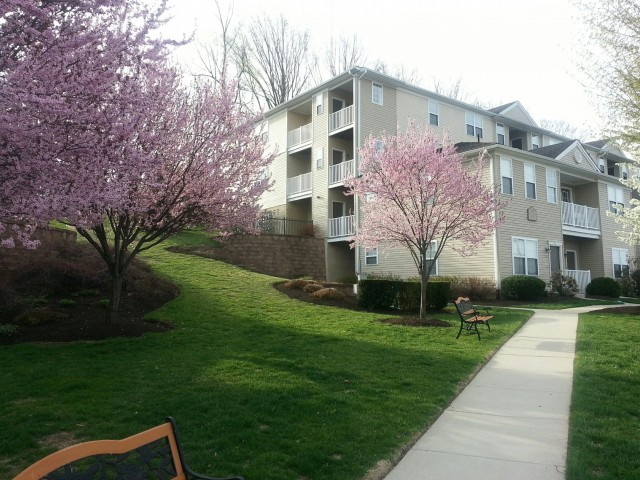 The Glen at Shawmont Station Apartment Homes image 0