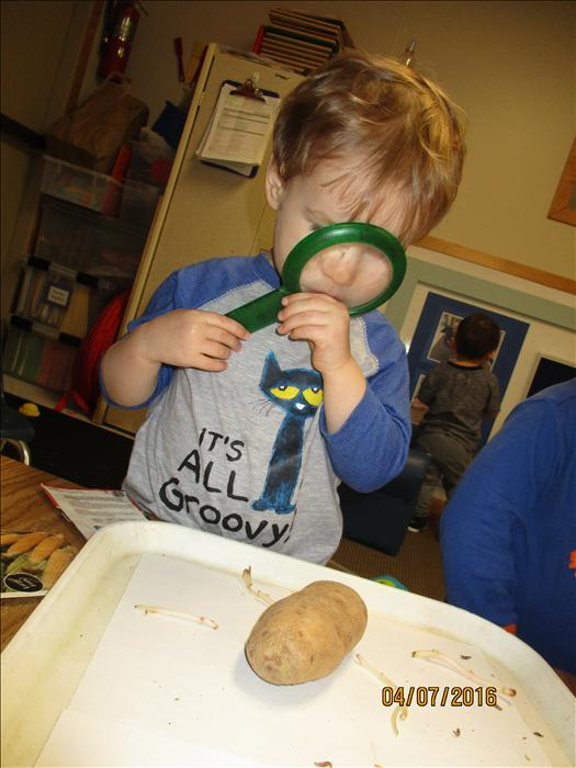 Shoreview KinderCare image 2