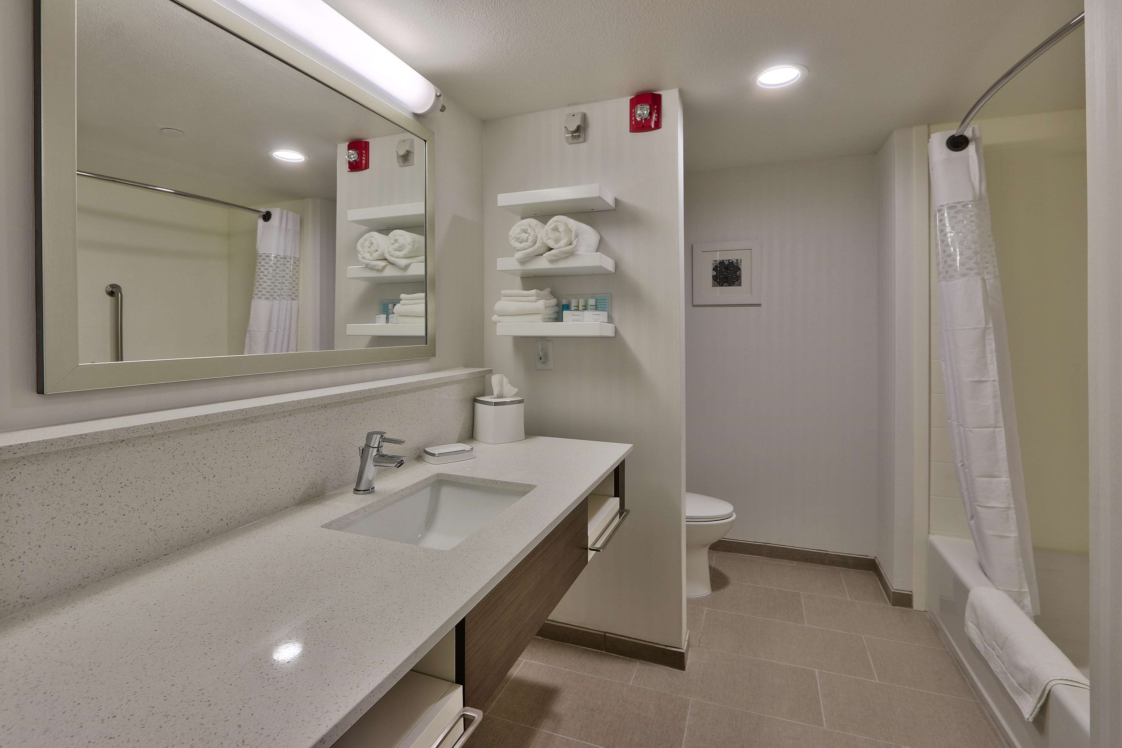 Hampton Inn & Suites Artesia image 31