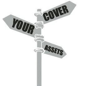 Cover Your Assets,LLC