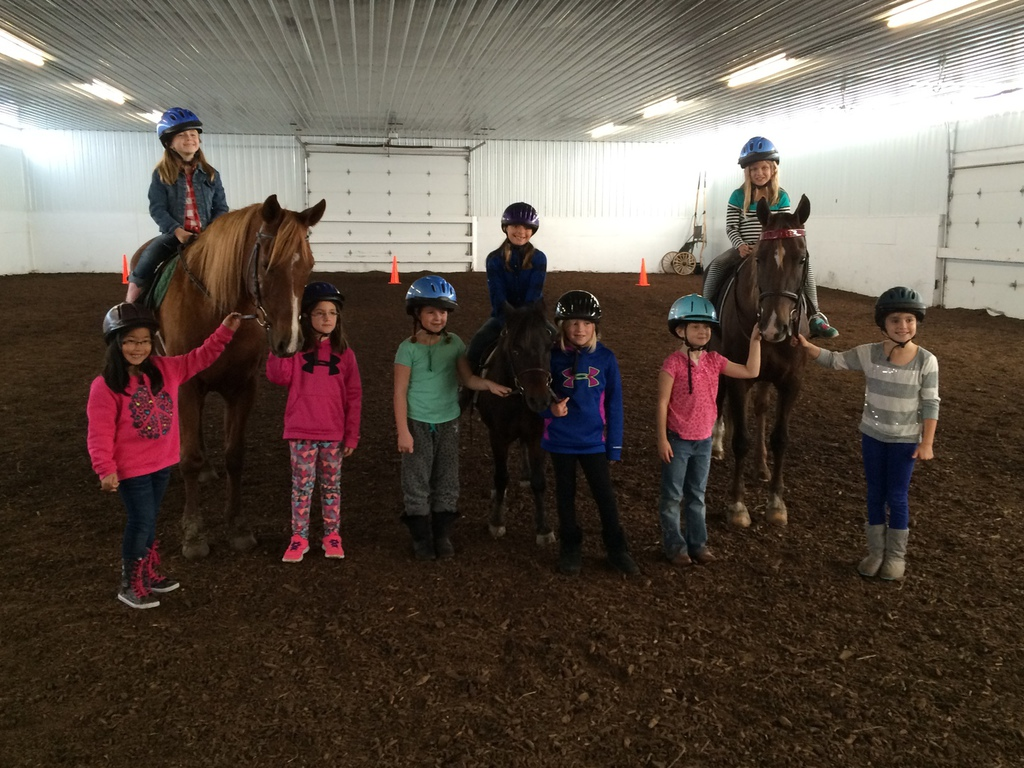Louw Stables LLC  Osage Ave Van Meter IA Riding Academies - Mapquest midwest usa
