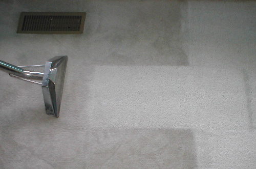 RoLin Janitorial image 1