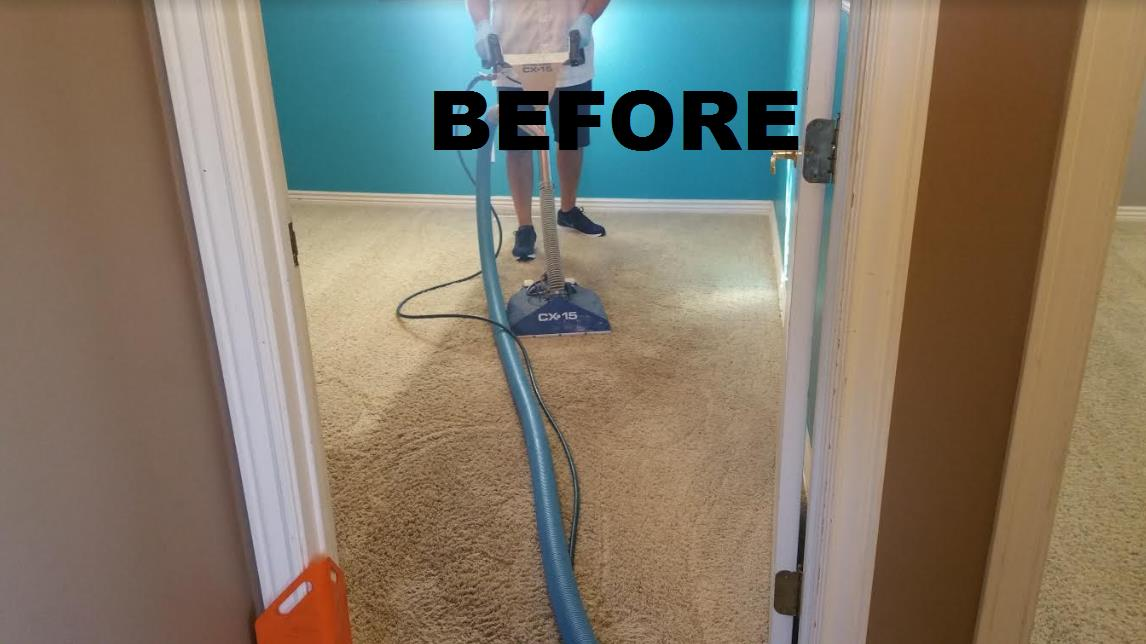 All Clean Carpet Care image 5