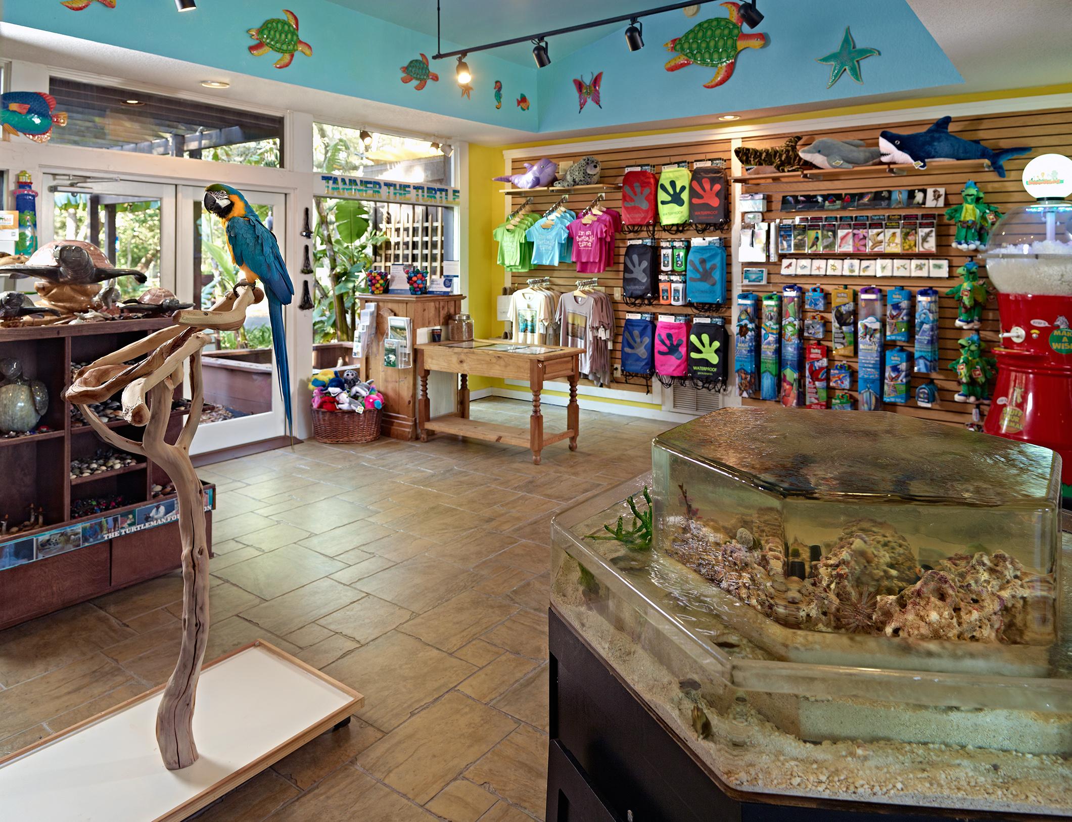 Omni Amelia Island Plantation Resort image 5