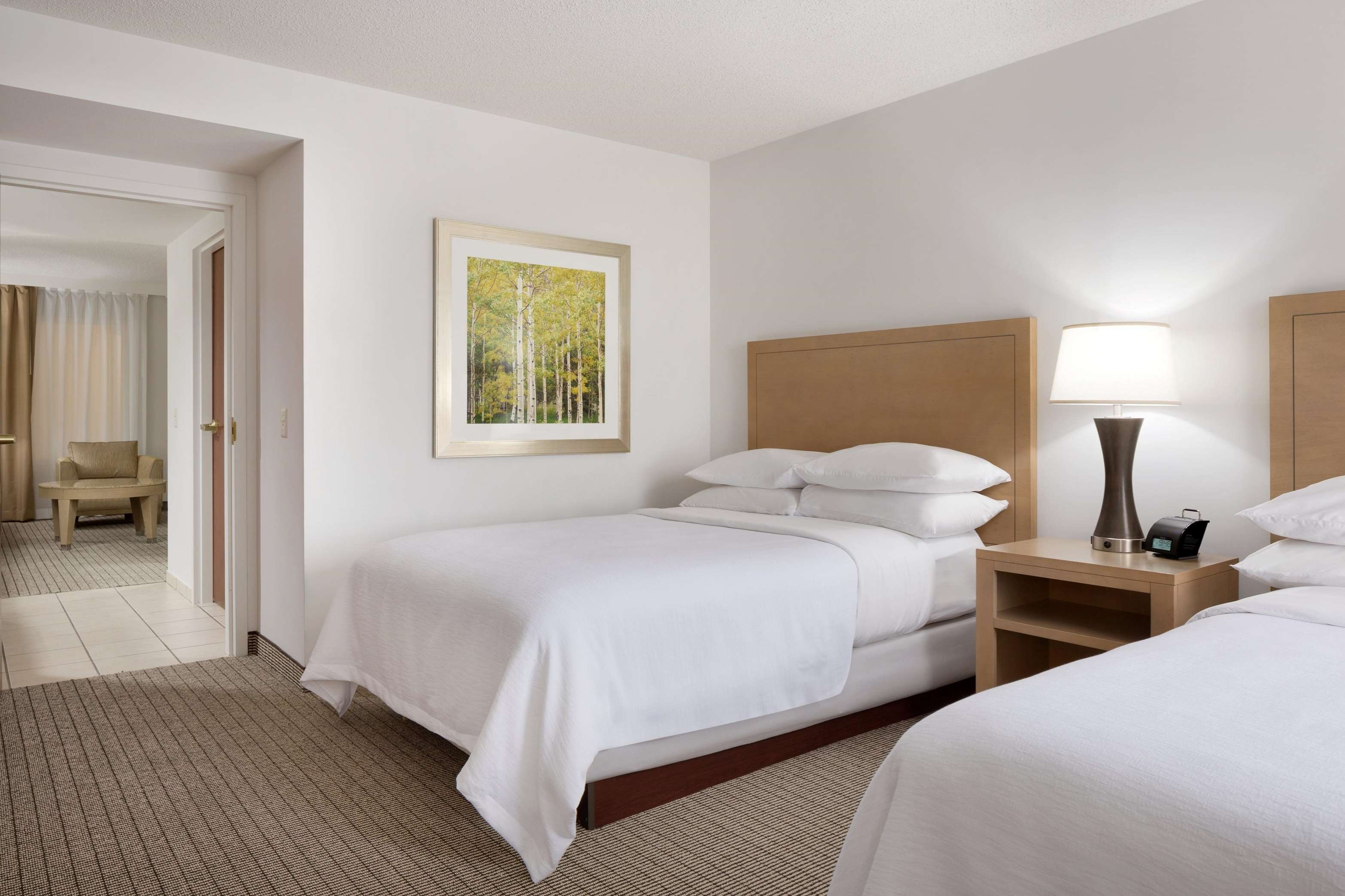 Embassy Suites by Hilton Denver International Airport image 25