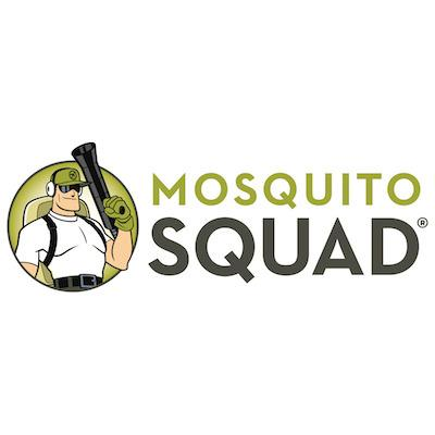 baf64d26882a Mosquito Squad of the Triad