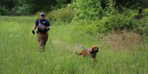 Scent Evidence K9 image 0