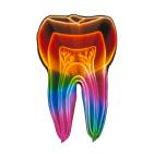 Prosthetic Dentistry of Washington D.C.: Gerald M. Marlin, DMD