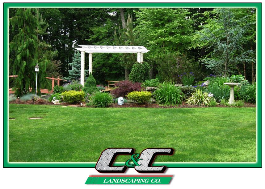 C&C Landscaping Co. image 3