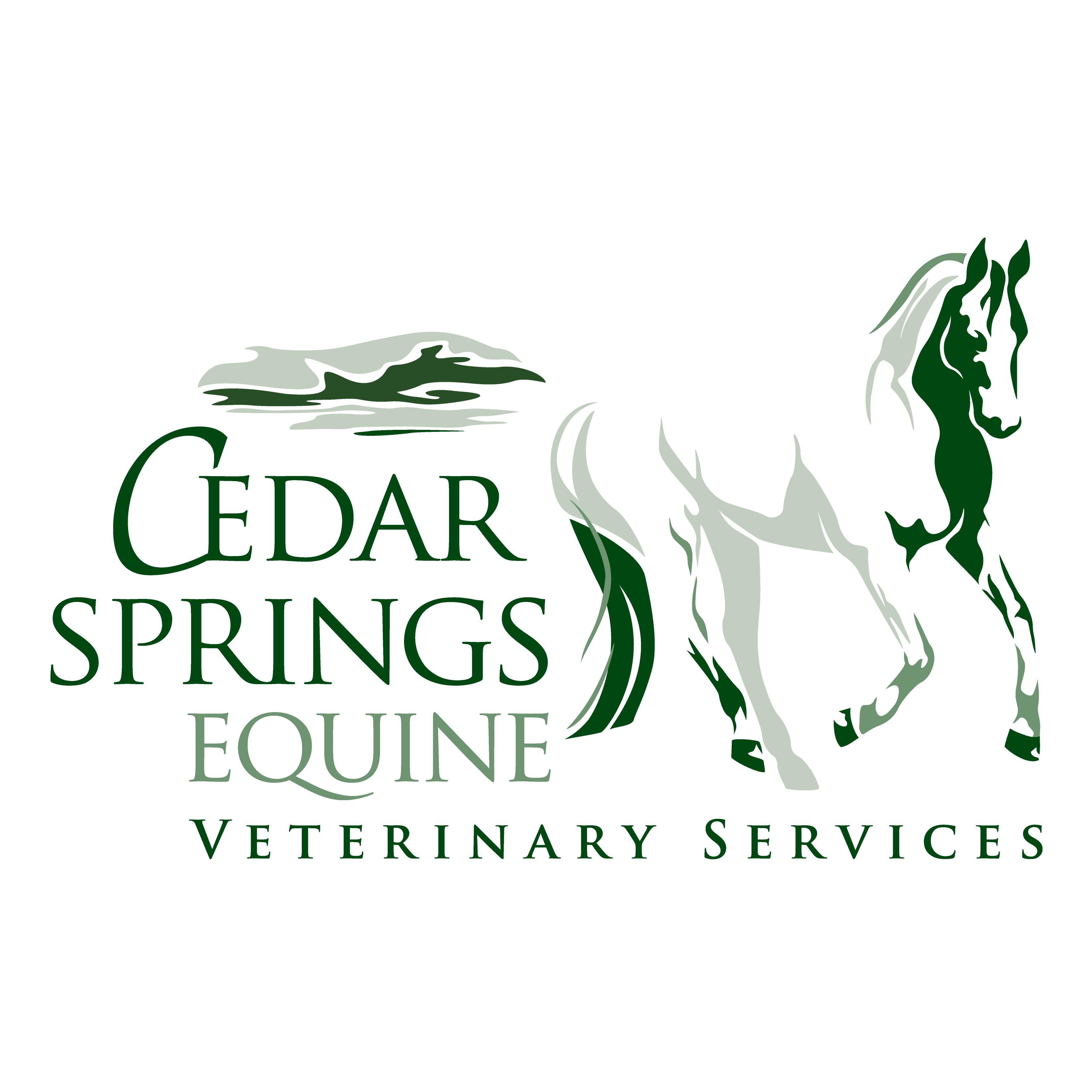 Cedar Springs Equine Veterinary Services