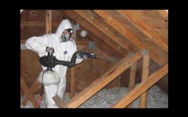First Choice Pest Control, LLC image 8