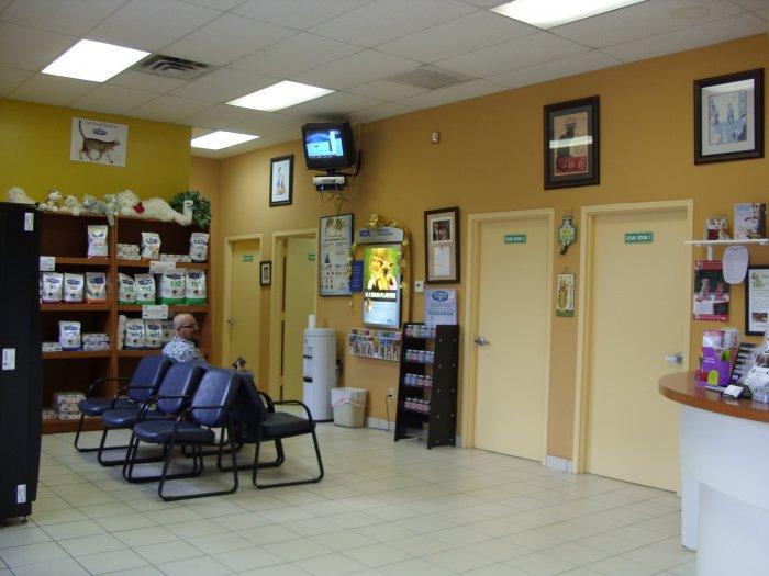 VCA Boca Greens Animal Hospital image 6