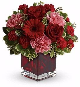 Raimondi's Florist image 4