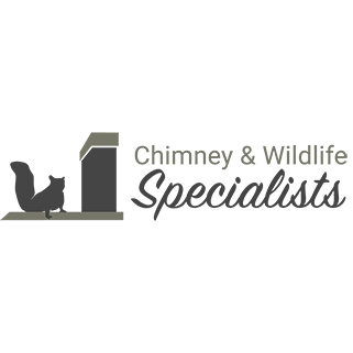 Chimney and Wildlife Specialists