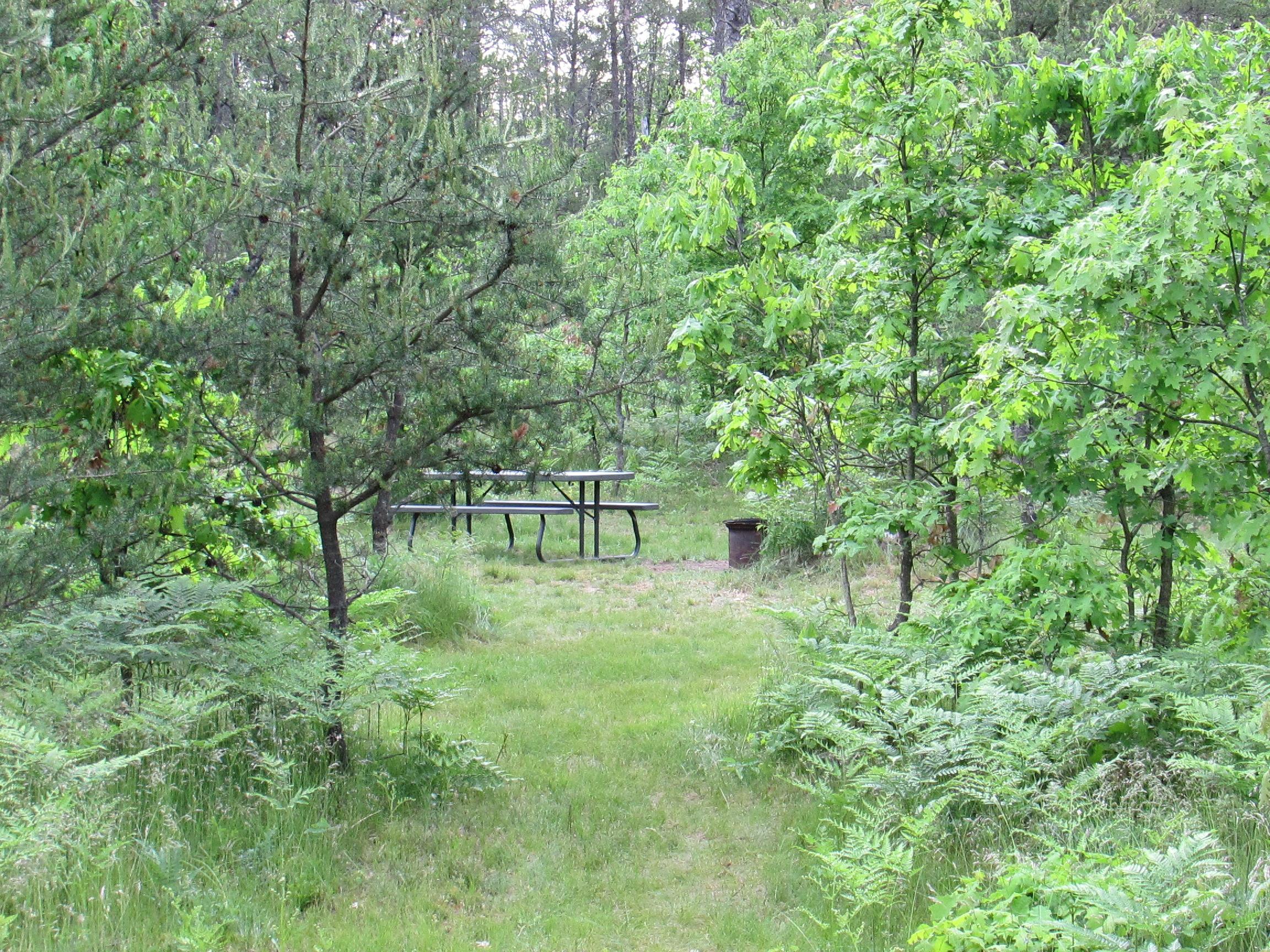 Best Bear Lodge & Campground Baldwin/Irons Area image 16