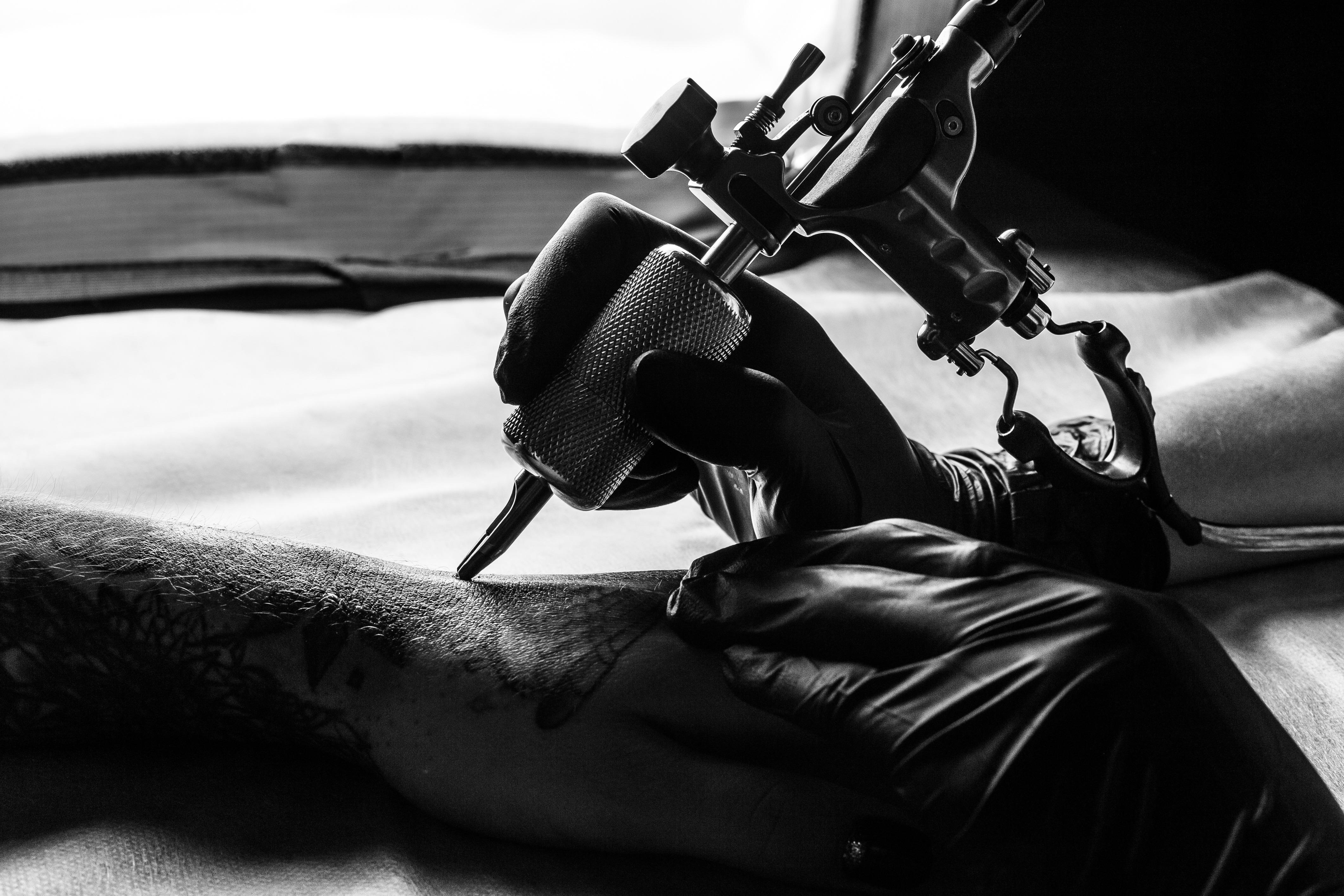 Bearded Dragon Tattoo Studio image 0