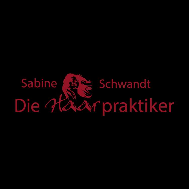 Logo von Die Haarpraktiker