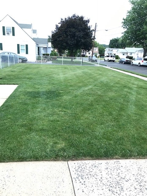 Rivera Brothers Landscaping image 4