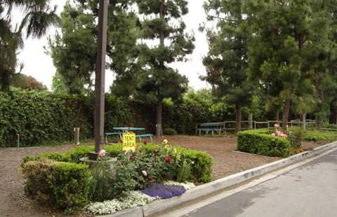 Los Angeles / Pomona / Fairplex KOA image 3