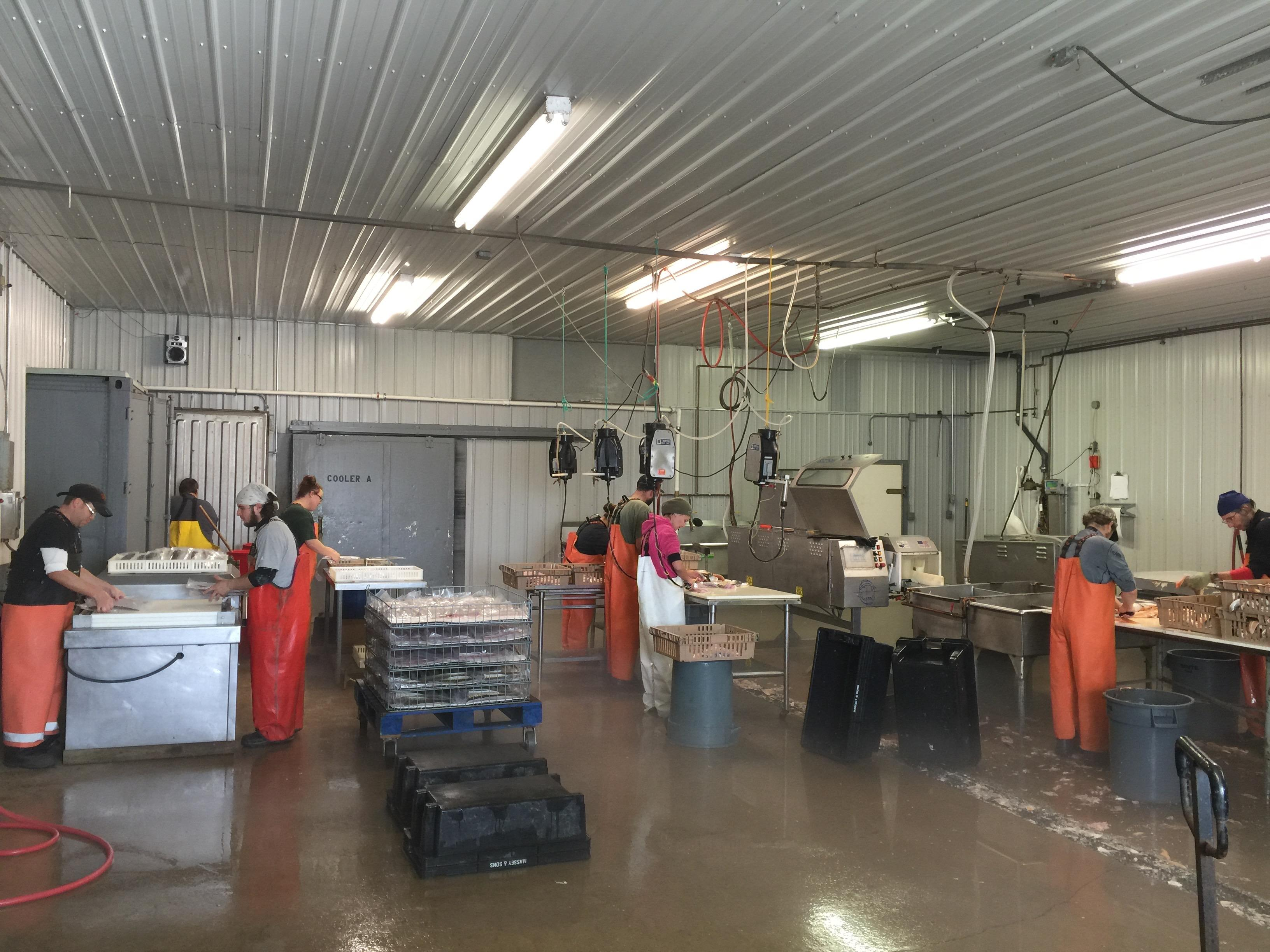 Massey Fish Co. image 13