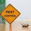Pest Depot